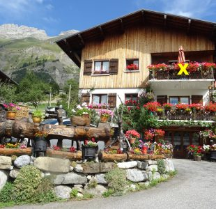 * Appartement 6 personnes au Chalet Edelweiss
